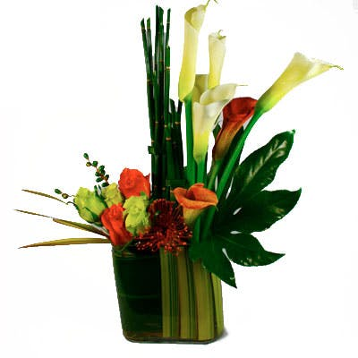 Jungle Stripes Flower Arrangement