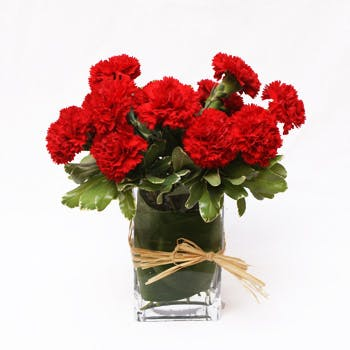 Carnation Flower Arrangement | San Francisco Florist Since 1871 Free Bay Area and San Francisco Flower Delivery