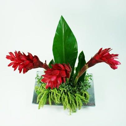 Modern Christmas Tree Flower Arrangement