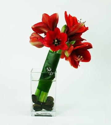 Diamond Amaryllis Flower Arrangement