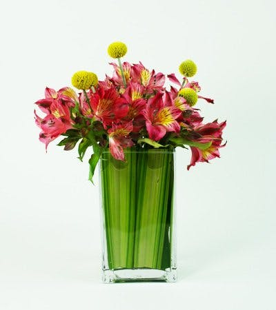 Alstroemeria Pop Flower Arrangement