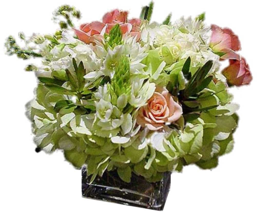 Celadon and Salmon Flower Arrangement | San Francisco Florist Since 1871 Free Bay Area and San Francisco Flower Delivery