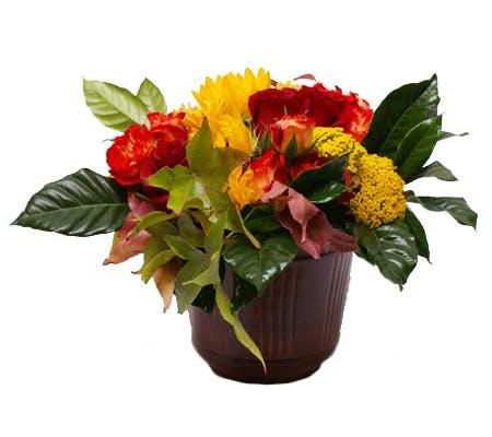 Turning Leaves Flower Arrangement | San Francisco Florist Since 1871 Free Bay Area and San Francisco Flower Delivery