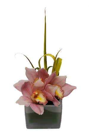 Striped Pink Flower Arrangement
