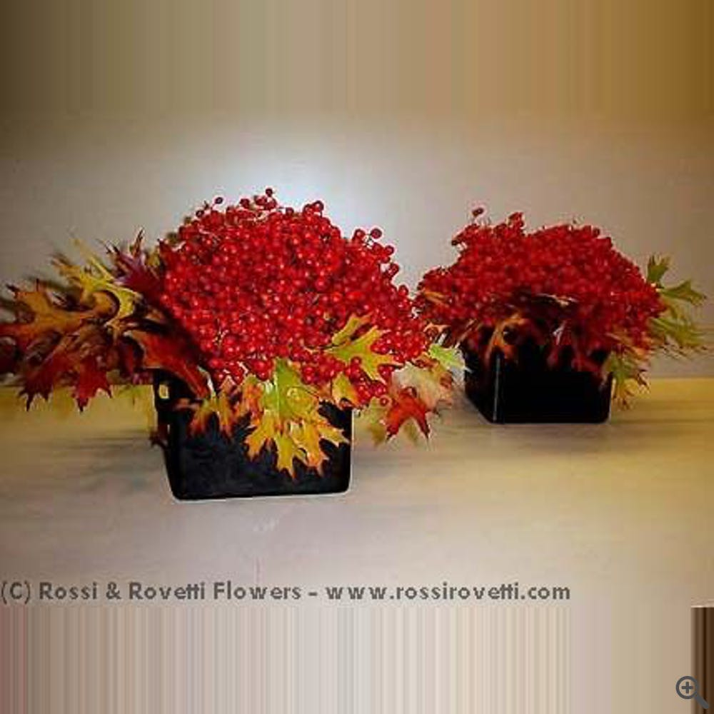 Berry Beautiful Leaf Box Duo - Flower Arrangement