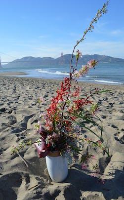 Jasmine Heights Flower Arrangement