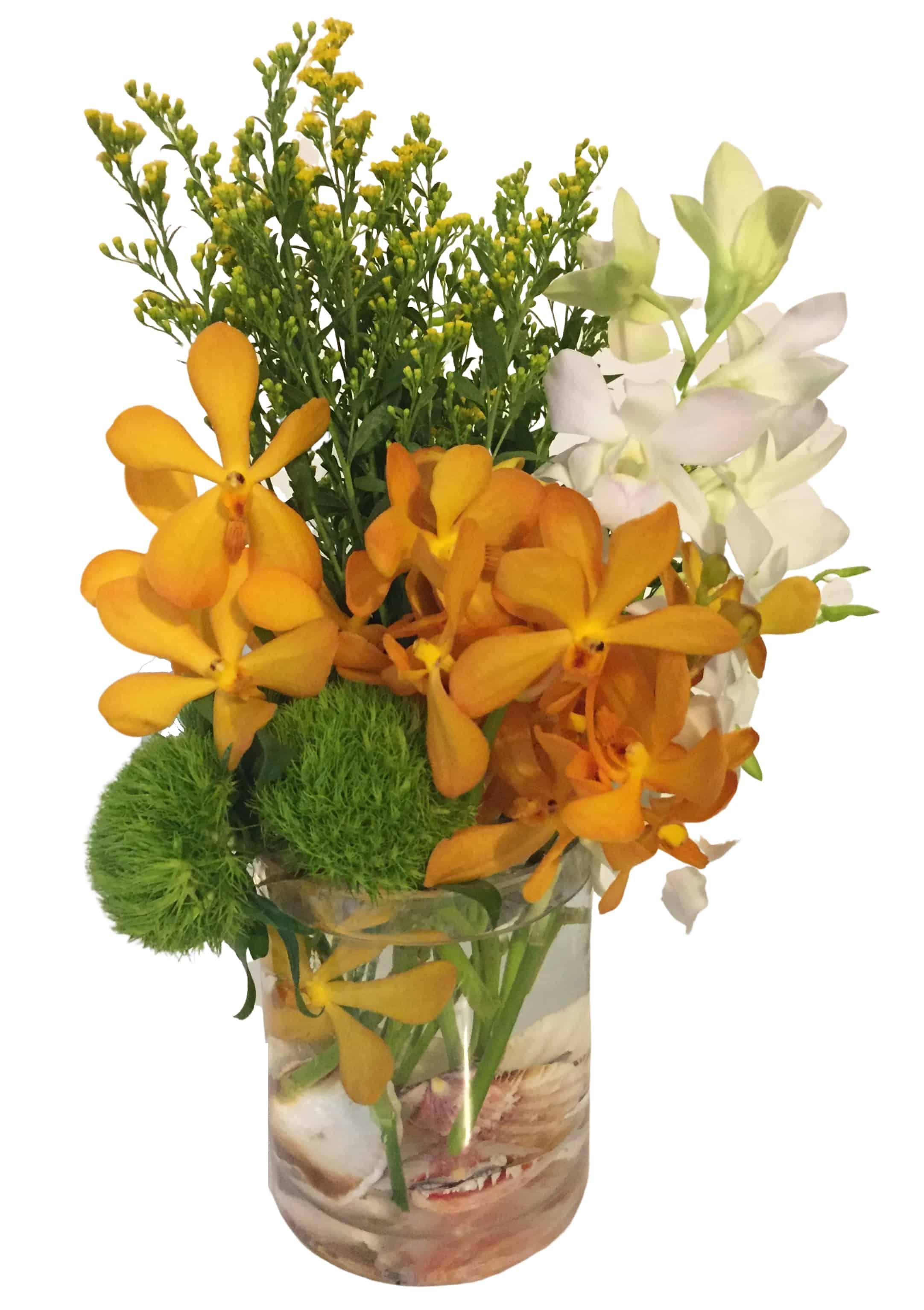 Orchid Shore Flower Arrangement | San Francisco Florist Since 1871 Free Bay Area and San Francisco Flower Delivery