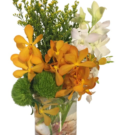 Orchid Shore Flower Arrangement | San Francisco Florist Since 1871 Free Bay Area and San Francisco Flower Delivery