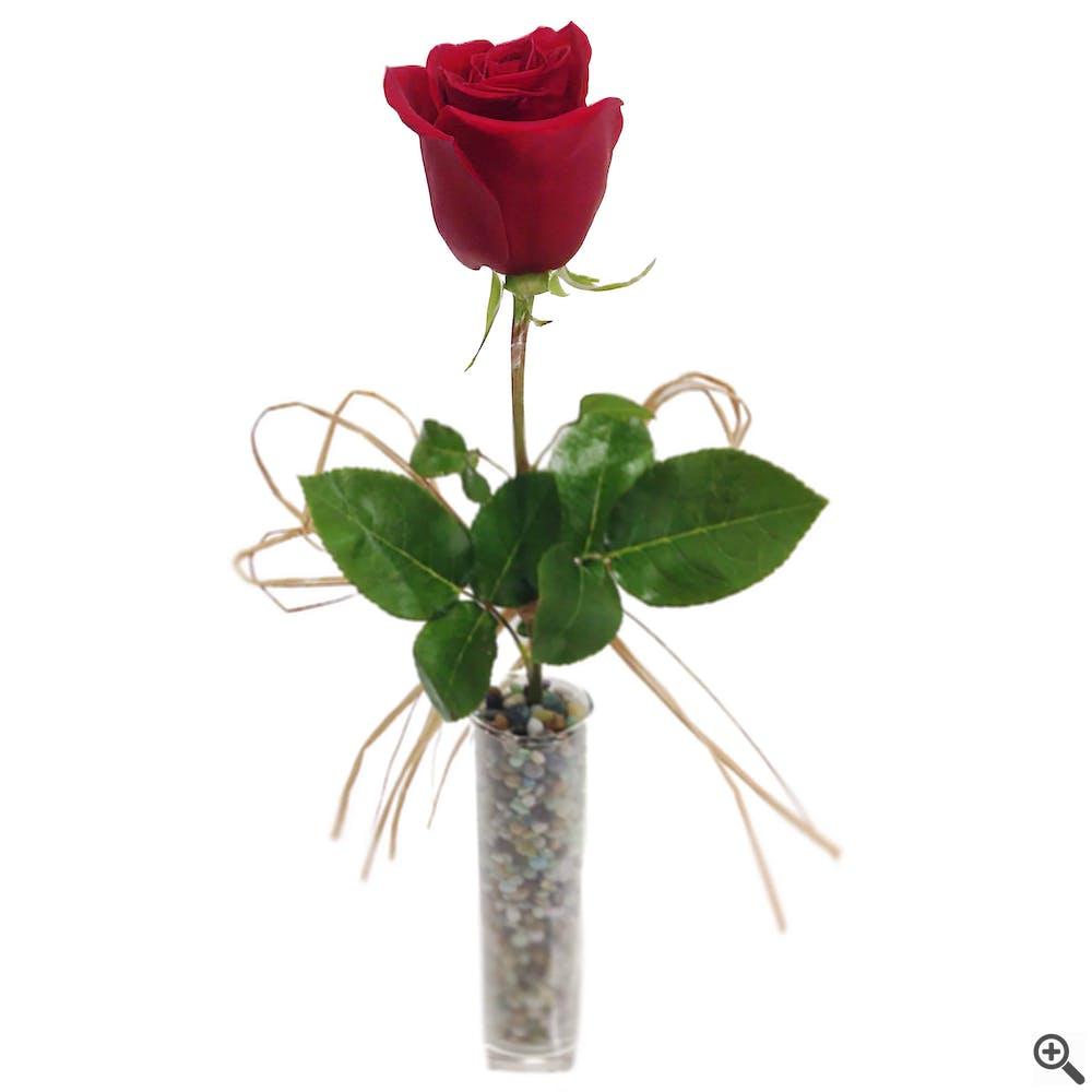 Pebbles and Reds Flower Arrangement