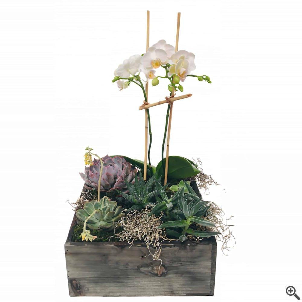 Office Friend Flower Arrangement