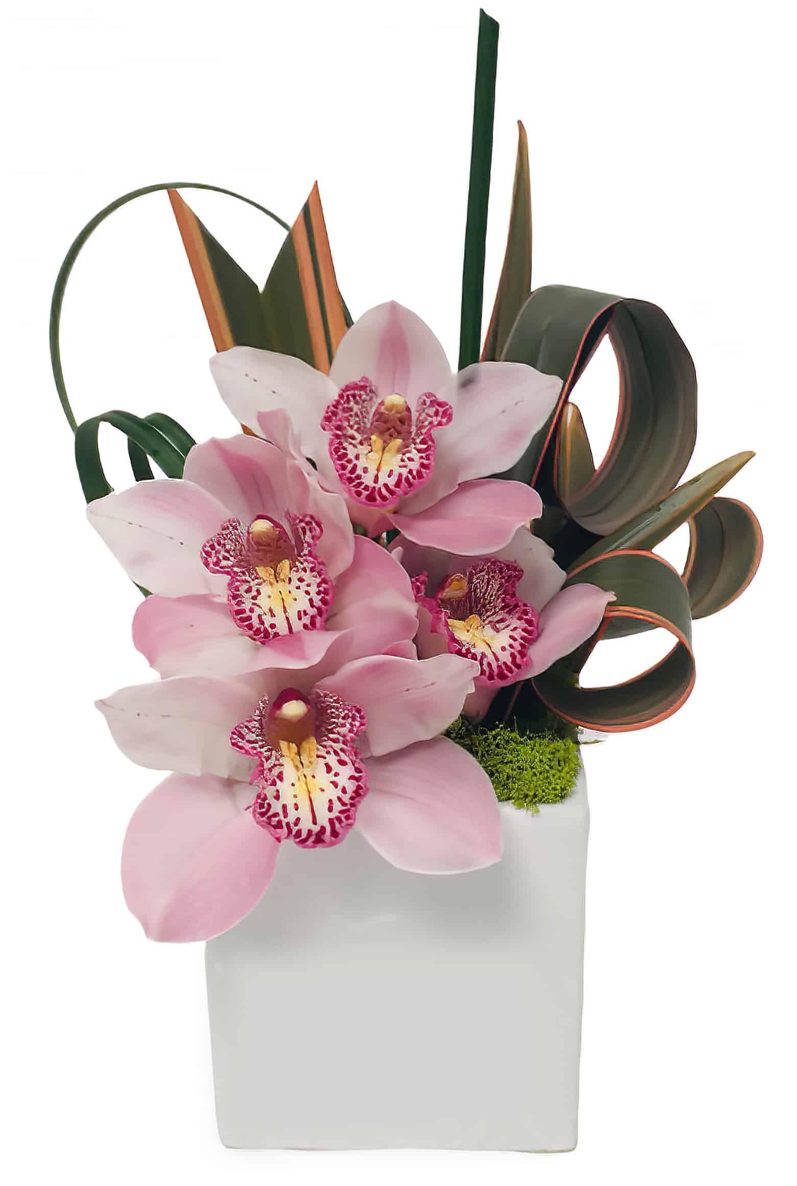Striped Pink Flower Arrangement | San Francisco Florist Since 1871 Free Bay Area and San Francisco Flower Delivery