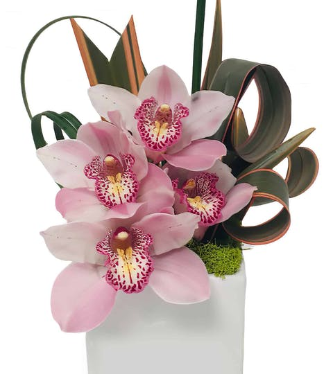 Striped Pink Flower Arrangement | San Francisco Florist Since 1871 Free Bay Area and San Francisco Flower Delivery