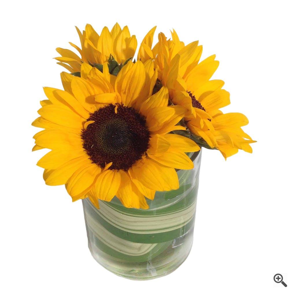 Sunflowers by the Sea Flower Arrangement