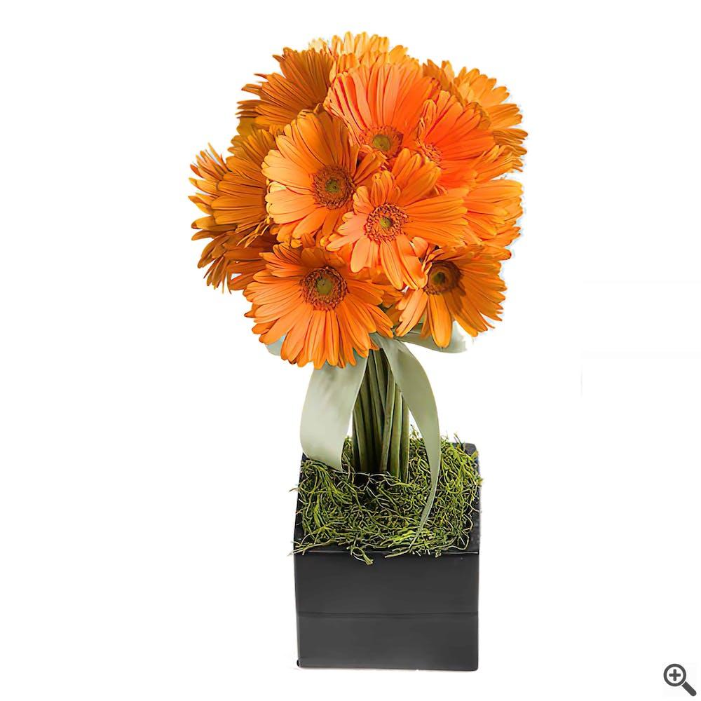 European Gerbera Topiary Flower Arrangement