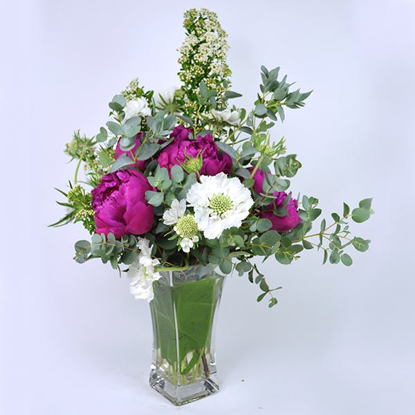 Summer Peony Mix | San Francisco Florist Since 1871 Free Bay Area and San Francisco Flower Delivery