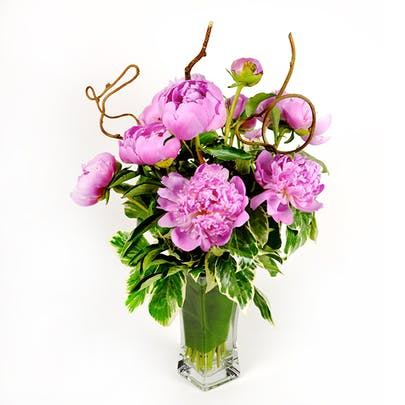 Twisted Peonies Flower Arrangement