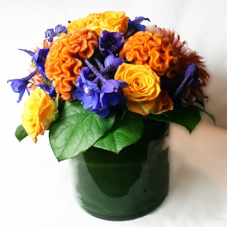 Cuckoo Wrasse Flower Arrangement