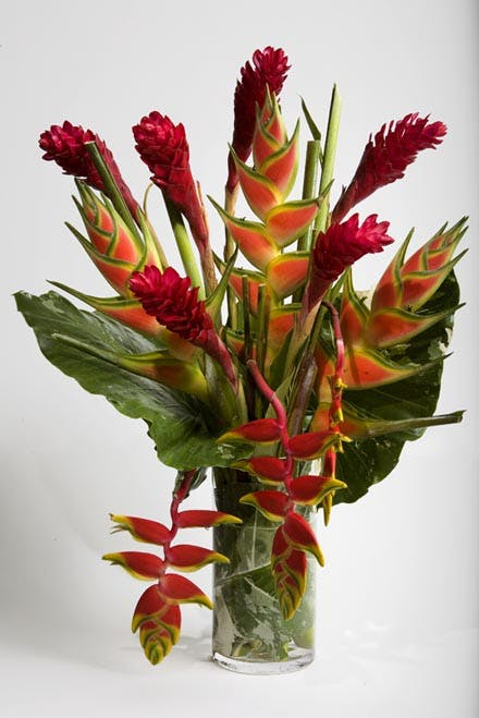 Tropical Heliconia Flower Arrangement