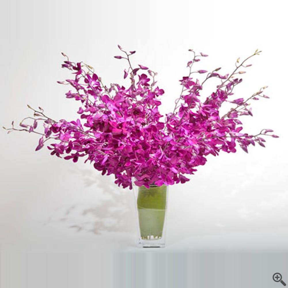 Dendrobium Pop! Flower Arrangement