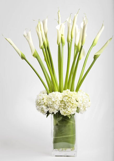 Tall White On Modern Flower