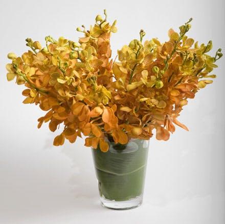 Lush of Color Flower Arrangement