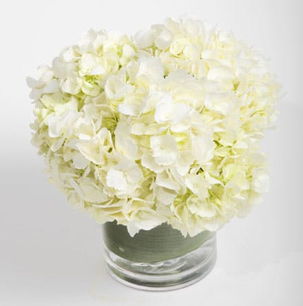 Simply Hydrangea Flower Arrangement | San Francisco Florist Since 1871 Free Bay Area and San Francisco Flower Delivery