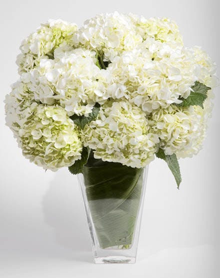 Hydrangea Paraded Flower Arrangement