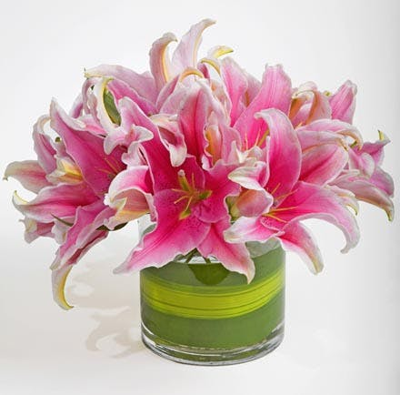 Simply Lily Flower Arrangement | San Francisco Florist Since 1871 Free Bay Area and San Francisco Flower Delivery
