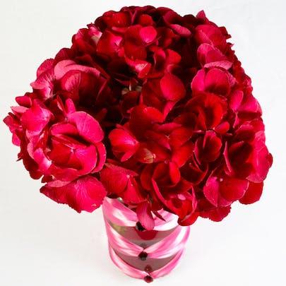 Rosa Couture Flower Arrangement