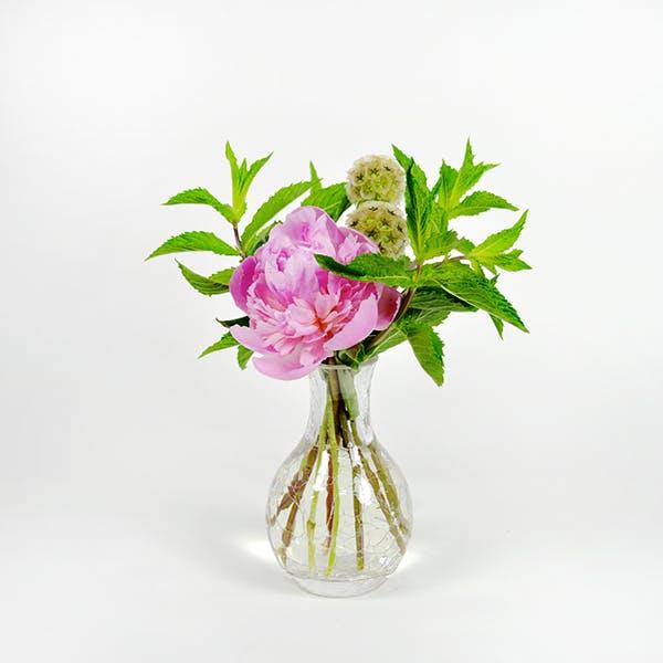 Minted Peony Flower Arrangement