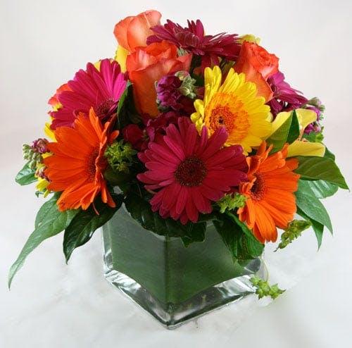 Raggi di Sole Flower Arrangement | San Francisco Florist Since 1871 Free Bay Area and San Francisco Flower Delivery