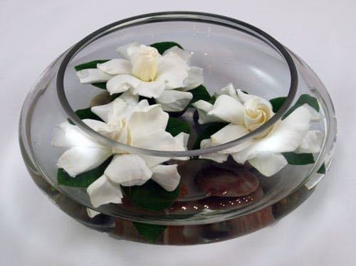 Floating Gardenia Bowl - Flower Arrangement