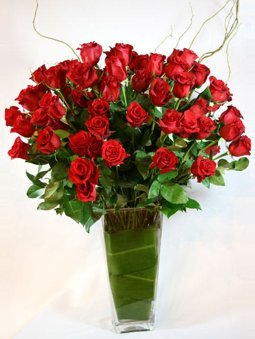 Six Dozen Long-Stemmed Red Roses