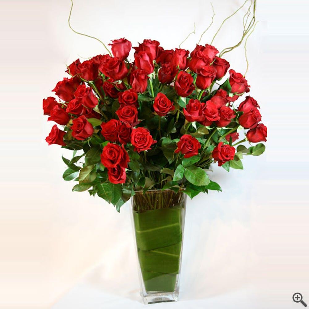 Six Dozen Long-Stemmed Red Roses