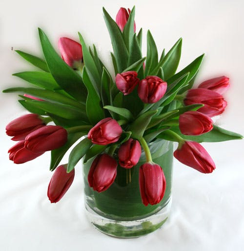 Tulip Cascade Flower Arrangement | San Francisco Florist Since 1871 Free Bay Area and San Francisco Flower Delivery