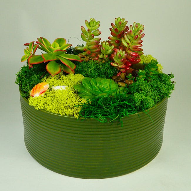 Ceramic Succulent Garden | San Francisco Florist Since 1871 Free Bay Area and San Francisco Flower Delivery
