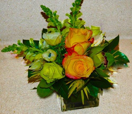 """""""Sera con Tristen"""" Flower Arrangement"""