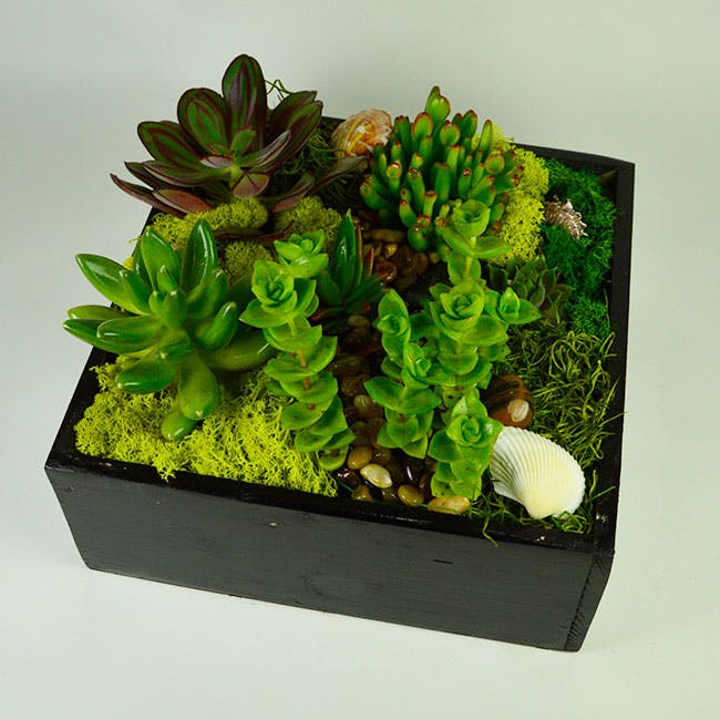 Boxed Succulent Garden | San Francisco Florist Since 1871 Free Bay Area and San Francisco Flower Delivery