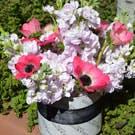 Pink Beauty Flower Arrangement