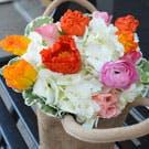 Basket of Poppies Flower Arrangement